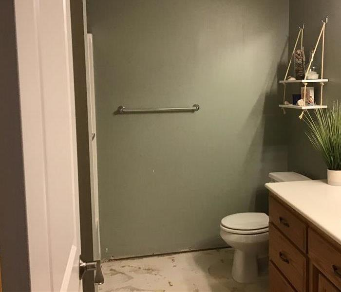 Bathroom with missing floor due to water damage.