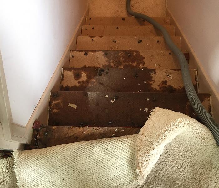 Water damage that ran down the stairway.