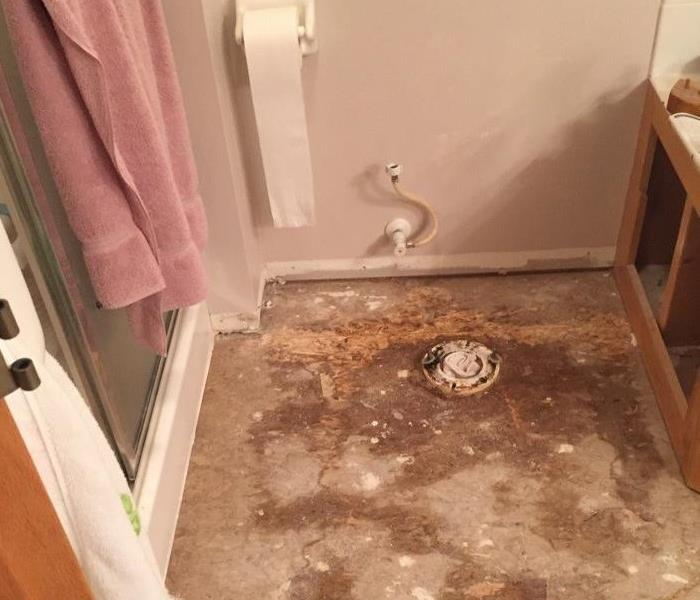 Toilet leak caused water damage throughout!