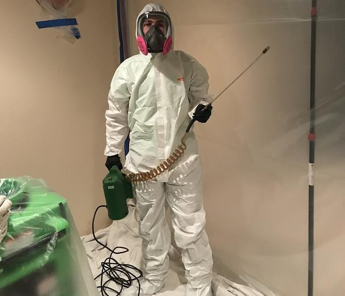 SERVPRO of St. Cloud Eliminating Mold & Staying Safe