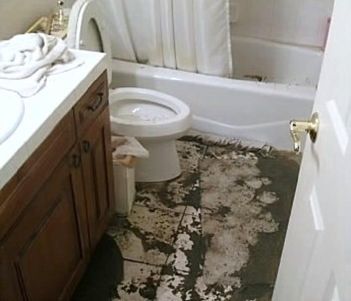 Toilet Leaks And Overflows Can Cause Water Damage