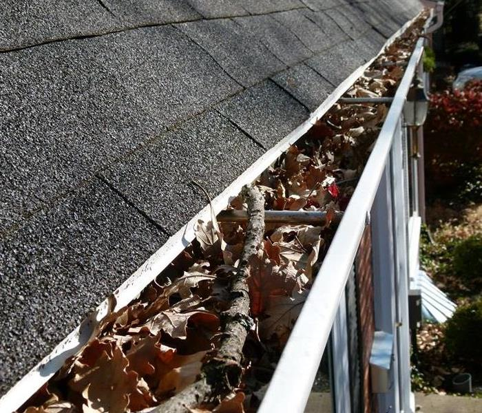 Water Damage Roof Maintenance Checklist for the Fall!