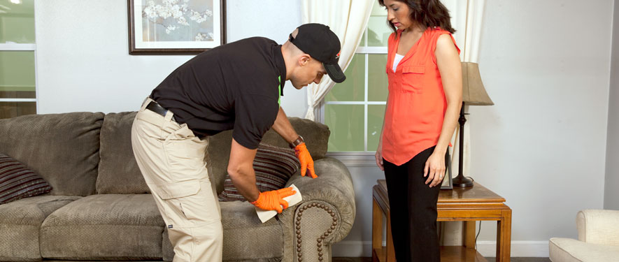 St. Cloud, MN carpet upholstery cleaning